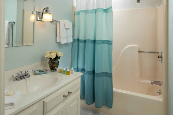 Light blue and ivory bathroom, tub-shower, creamy vanity, fresh flowers and white towels