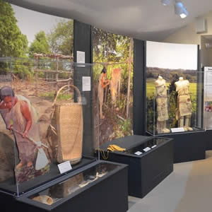 Glass displays cases of artifacts inside the Cape Cod Museum of Natural History