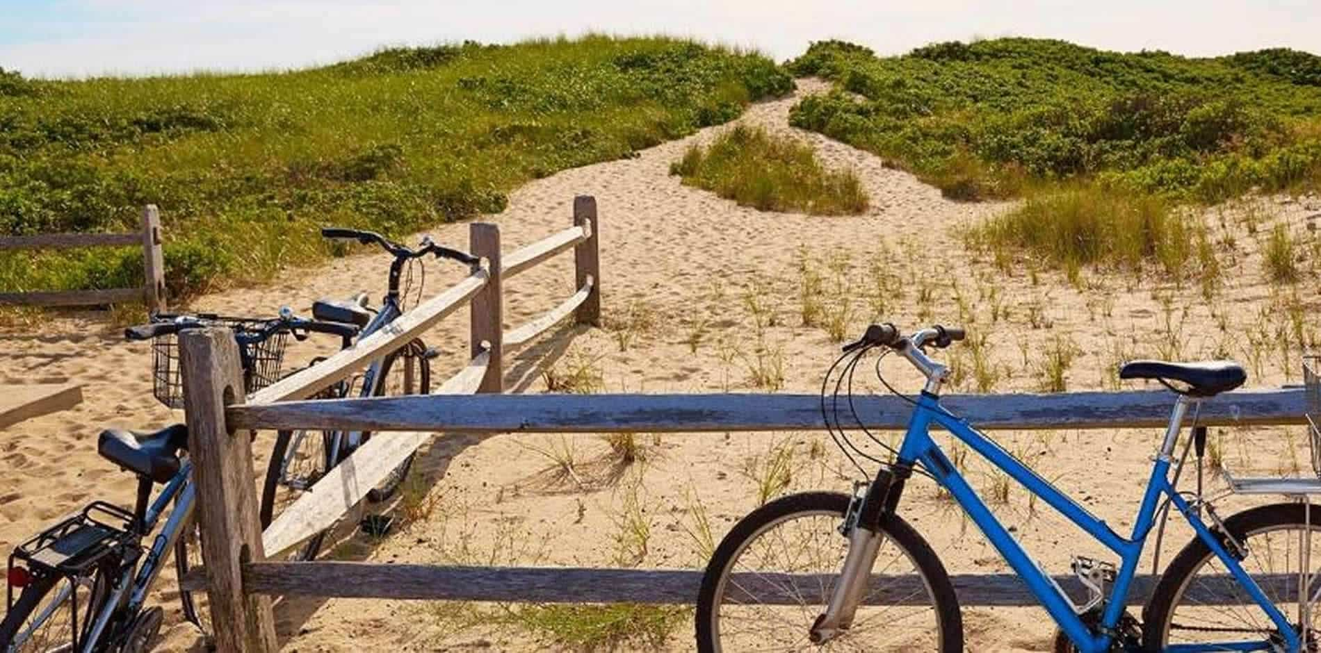 Sand dune topped with greenery and three bicycles parked by a wood fence