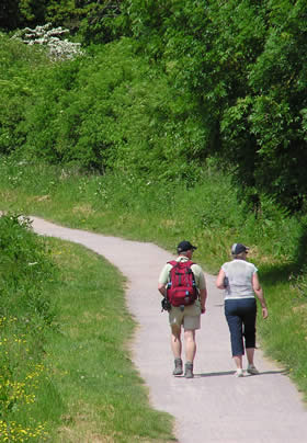 Rear view of man and woman hiking down a path flanked by green grass, shrubs and trees